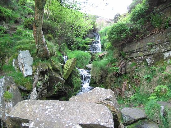 Things to do in Haworth - Bronte Waterfall